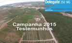 DELEGATE - testemunhos Campanha 2015